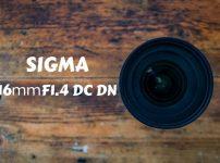 【レビュー】SIGMA 16mmF1.4DC DNが最高なので作例と共に紹介する